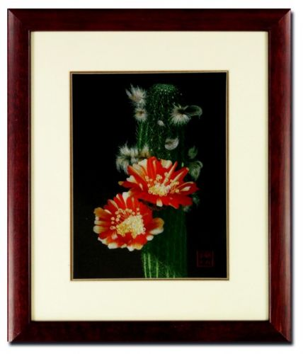 Silk Embroidery picture – Cactus Blossom by Chinese Master Craftswoman of the Gu family